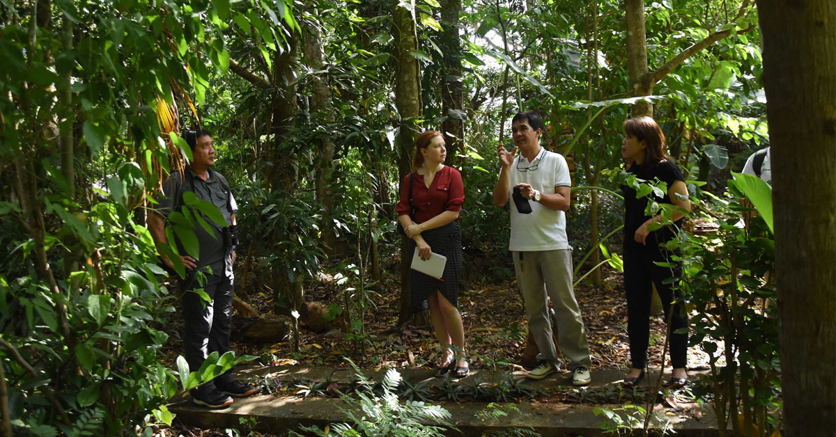 L-R, City ENRO Atty. Carlo B. Gomez, Ms. Claire Bea, US Foreign Service Officer of the of the US State Department, Forester Jovic Fabello, information officer of the Palawan Council for Sustainable Development (PCSD) and Cecilia Isubal, city coordinator of SURGE project, during their site visit in the tree assessment site in one of a private resort in Puerto Princesa City.