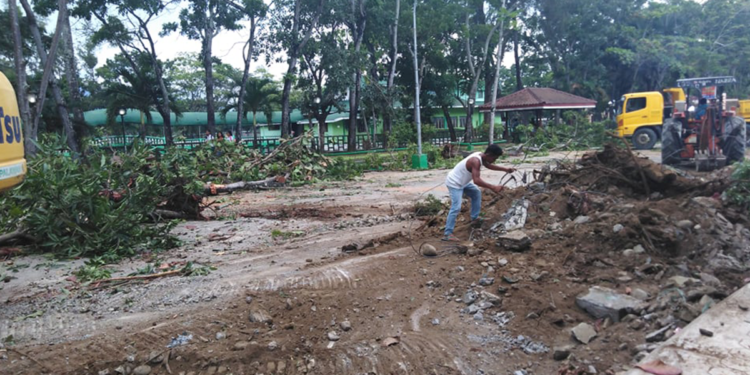 The tree-clearing operations at Narra Park Way. Photo by Hanna Camella Talabucon/Palawan Daily News