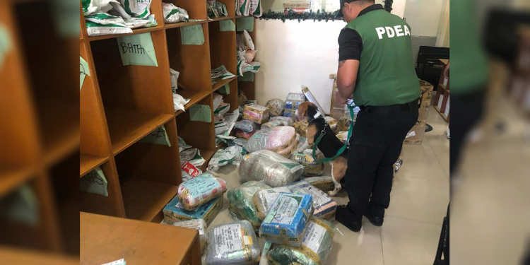 Noong ika-10 ng Enero, nagsagawa ng random inspection ang PDEA-MIMAROPA sa hub ng isang logistics company sa Puerto Princesa kasama ang K9 Narcotics Detection Dogs. Photo courtesy of PDEA MIMAROPA