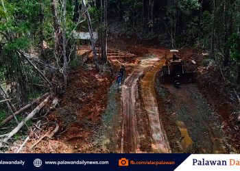 Portion of the forest in Talaudyong, Brgy. Bacungan was cleared with the illegally constructed road and box culvert within the core zones. Photos from ELAC's FB Post.