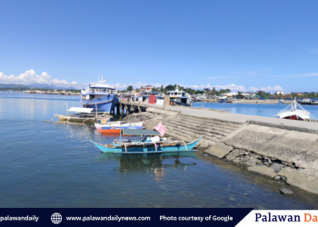 This is currently the only existing ferry service in Puerto Princesa that runs between the Puerto Princesa Baywalk Pier and the Mangingisda Fish Port in Bgy. Mangingisda. Photo courtesy of Daniel Uherek/Google Street View